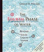 Fourth Phase of Water: Beyond Solid, Liquid and Vapor