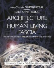 Architecture of the Human Living Fascia