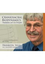 Craniosacral Biodynamics: D V D Set,  Foundations & Core Principles