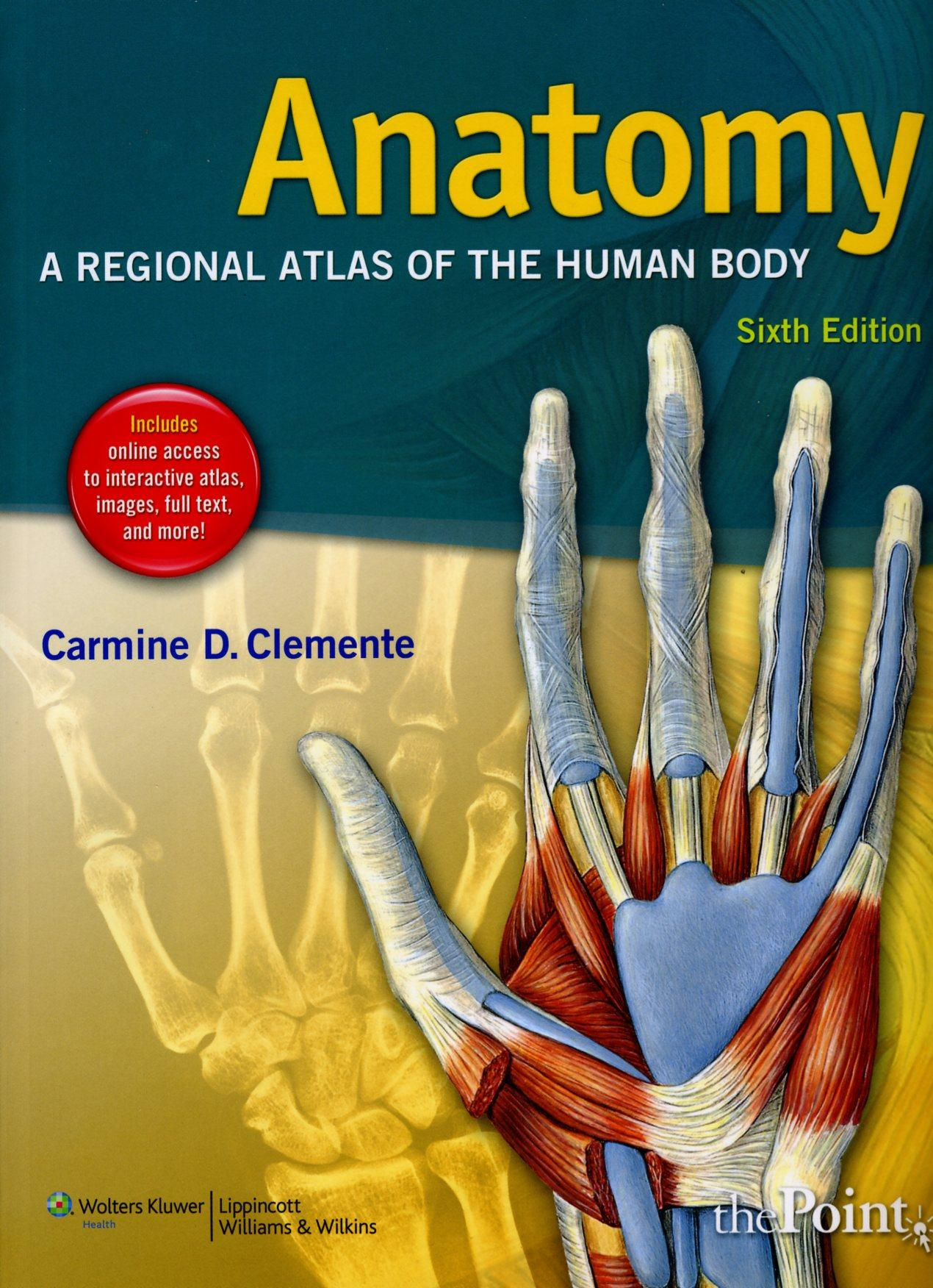Anatomy A Regional Atlas Of The Human Body 6th Edition Pacific